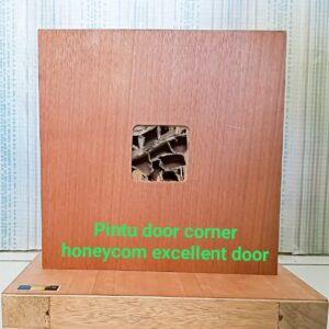 DC Honeycomb Excellent Door