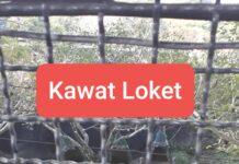 Kawat Loket 2